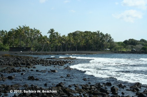 One view of the black sand beach