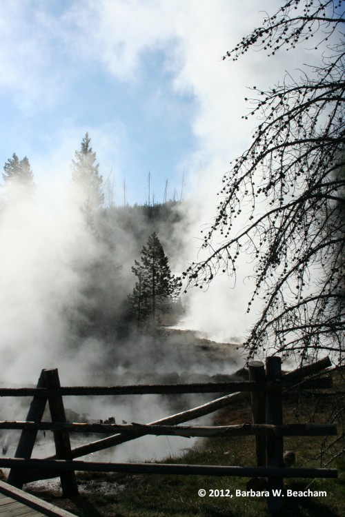 Yellowstone is steaming