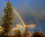 Water gives us rainbows