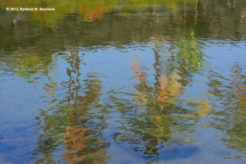 The ripple effect creates texture