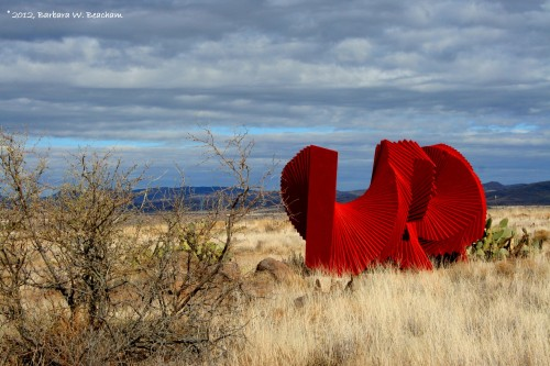 An unusual sight in the desert