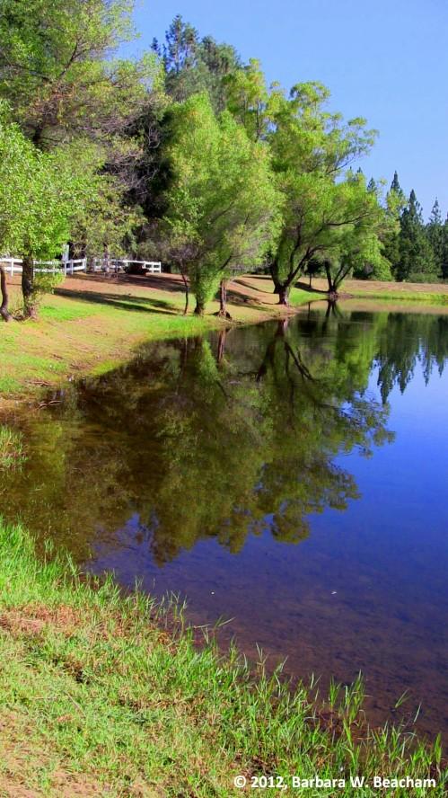 Enjoying a local lake
