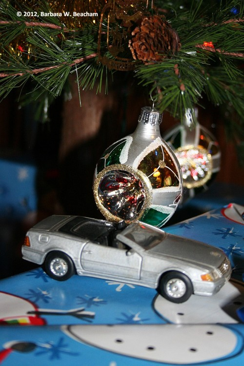 The Mercedes under the tree