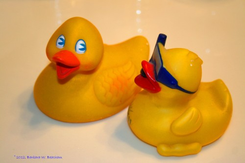 The missing rubber ducks