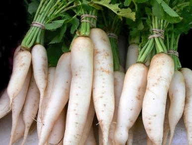 Daikon - Photo from EdenBrothers.com