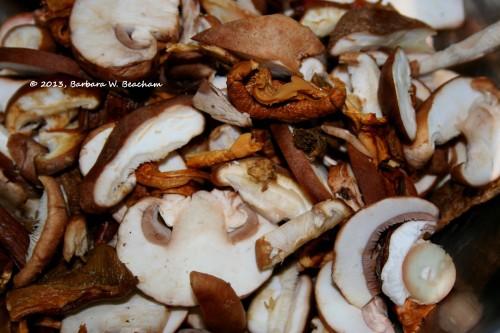 Mushrooms combined