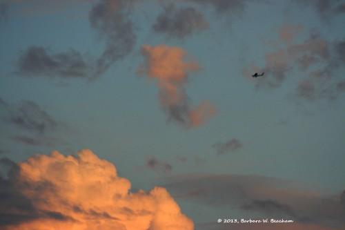 We sight the plane