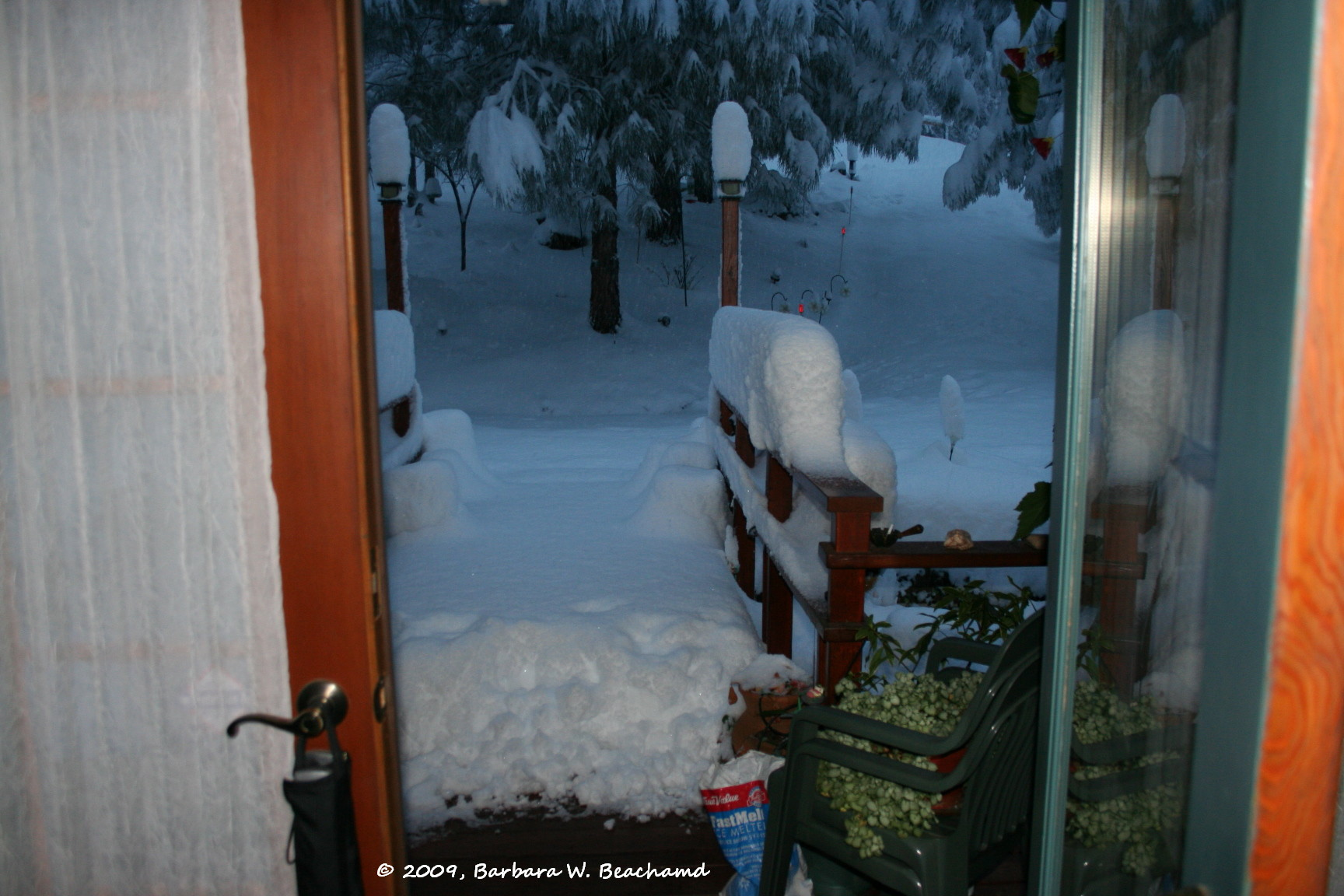Looking out our front door | Life in the Foothills