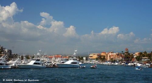 The harbor at Cabo San Lucas
