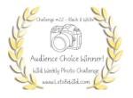 Audience Choice Award – Challenge#22