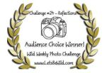 Audience Choice Award – Challenge#24