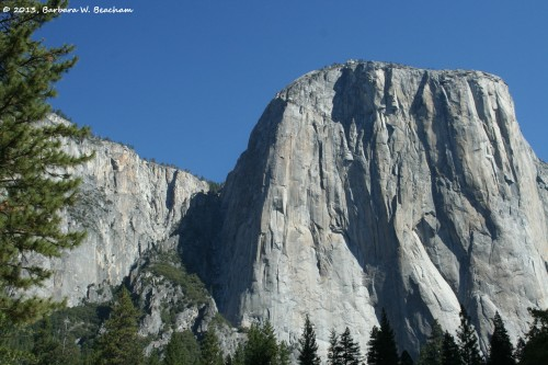 A view to the top of El Capitan