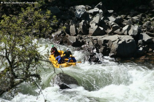 At the top of the rapids
