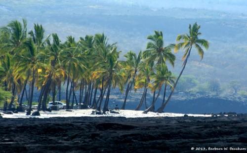 A white sand beach at Honaunau Bay on the Island of Hawai'i