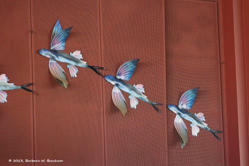 Flying fish don the walls