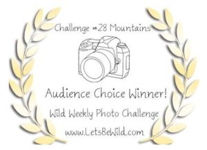 Audience Choice Award - Challenge #28