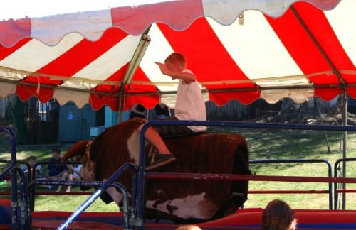 Ride a bull!