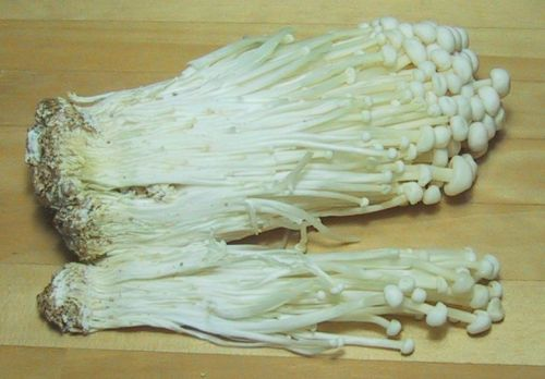 Enoki Mushrooms - Photo by Chris 73