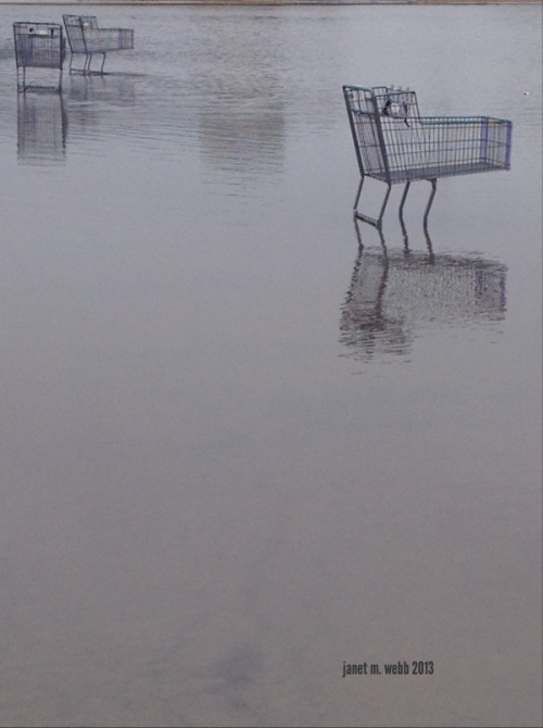 Shopping Carts - Photo by Janet Webb