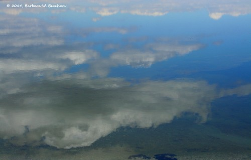 Clouds mirrored in Lake Yellowstone