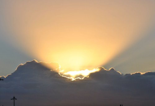 Rays of Sunshine - Photo by Alastair Forbes