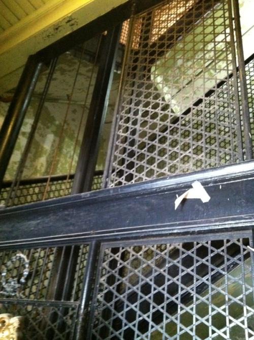 The Elevator Shaft - Photo by Rochelle Wisoff-Fields