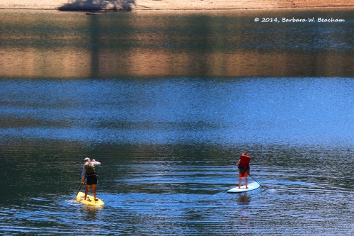Paddle boarding at Stumpy Meadows