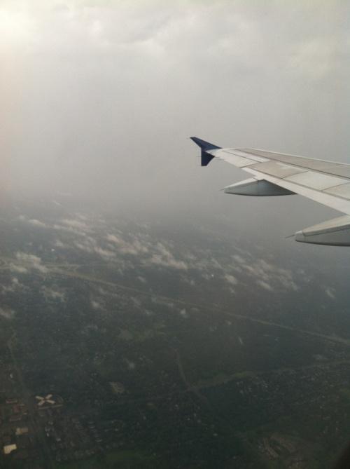 The Flight - Photo by Rochelle Wisoff-Fields