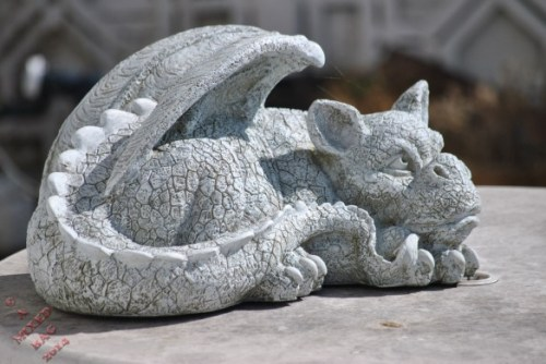 A Dragon in the Garden - Photo by Alastair Forbes