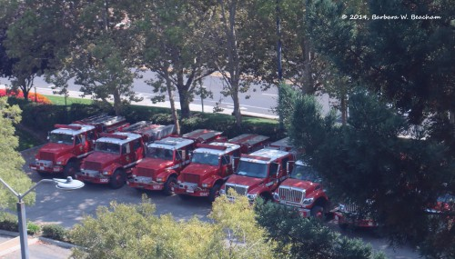 Fire trucks at our hotel