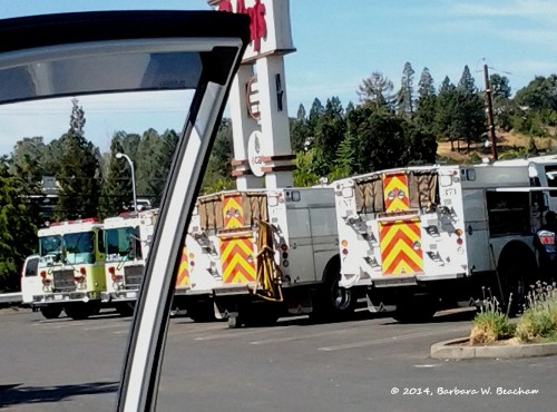 Staging area at the local grocery store -1