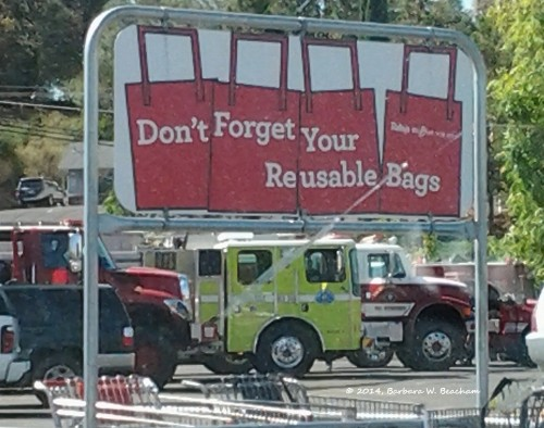 Staging area at the local grocery store -2
