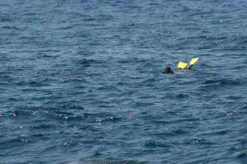 2014-12-08 - BW Beacham