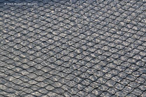 Net on water