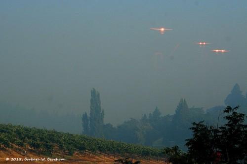 UFO's - Photo by Barbara Beacham