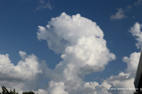 I see a face in the clouds